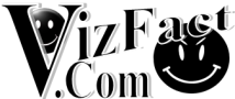 VizFact Dot Com Official Logo